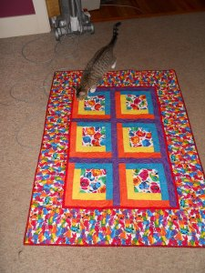 Winnie checks out my workmanship! (The Laughing Dog Quilt...in memory of my dog, Spot.)